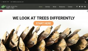 Four Seasons Tree Care, Unique Concepts Online, Website Design, SEO, Social Media